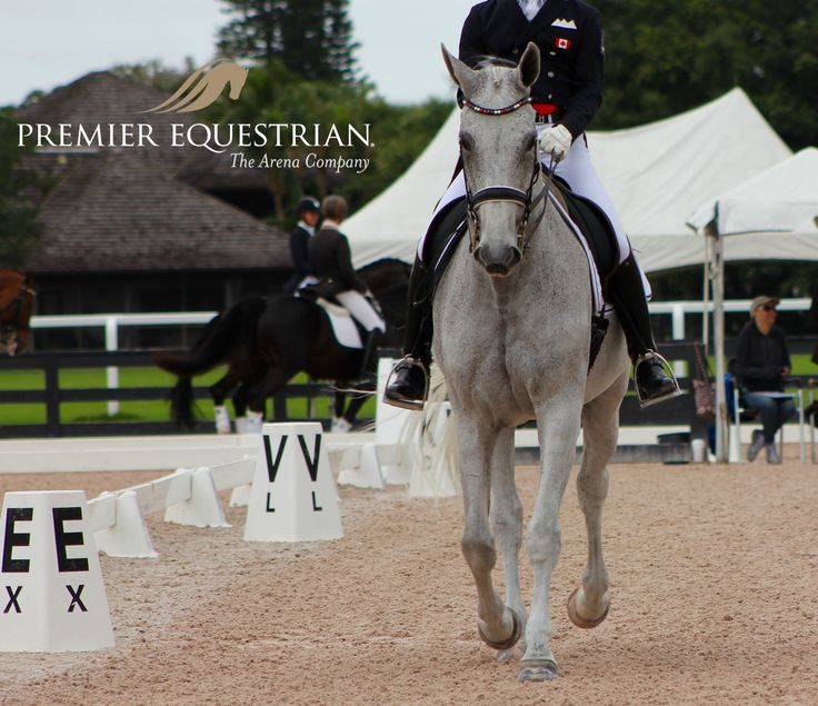 Form, Function, Affordability. #dressage #letters #windproof #horse #horses #equestrians #equestrian