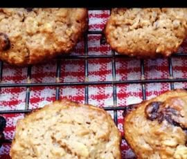 Lactation Cookies (Thermomix)