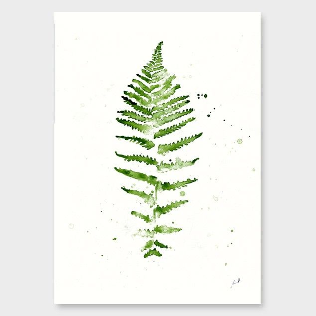 Green Fern Art Print by George Sand Studio - All Art Prints NZ Art Prints, Art Framing Design Prints, Posters & NZ Design Gifts | endemicworld