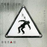 nice DANCE & DJ - Album - $5.00 - The Big Dream