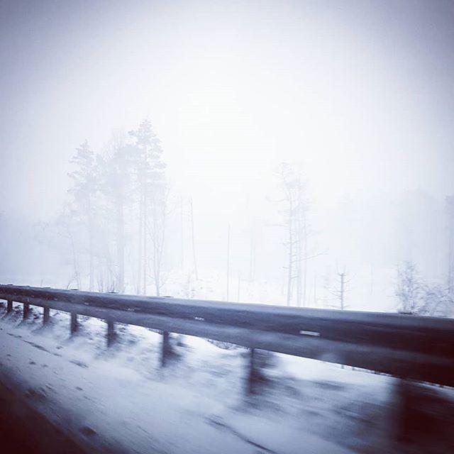 Det snør på Sørlandet  Trafikken går veldig sakte. #biltur #sørlandet #snø #snøvær