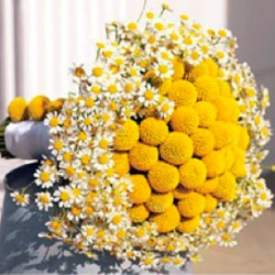 Sweet Simple Yellow and White Bouquet