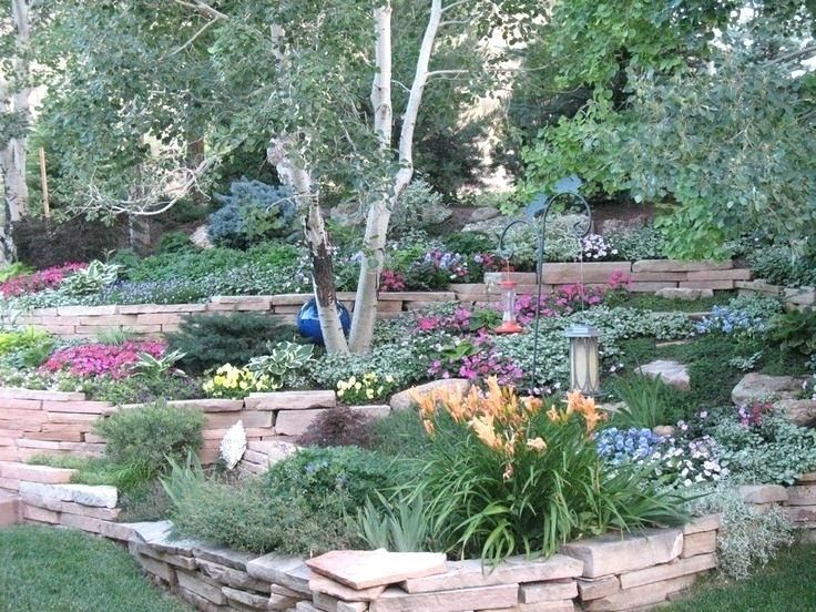 Image Result For Garden Center Cary Image Result For Garden Center