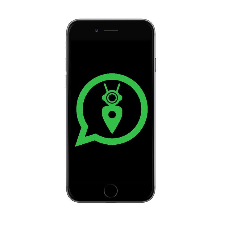WhatsBot Brings A Virtual Assistant To WhatsApp