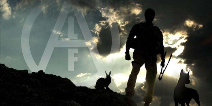 Ekim ayının ilk yarısında gerçekleşen hayvan hakları mücadelesi haberleri-  #ALF #ELF #HayvanÖzgürlüğü