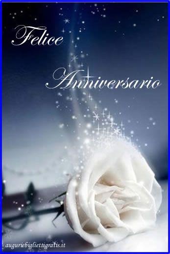 auguri per anniversario con rosa bianca