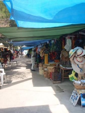 Ocho Rios market. Giant spider webs on the walk there.
