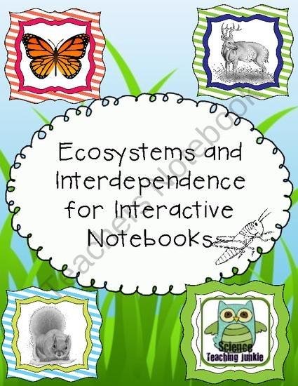 Ökosysteme und Interdependenz für interaktive Notebooks.