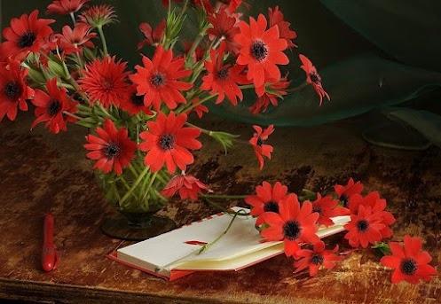 Study in scarlet colors Photographer: Ulya (Julia Medvedev)