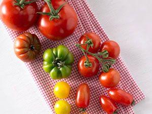 Tomaten-Rezepte: Sommer pur!
