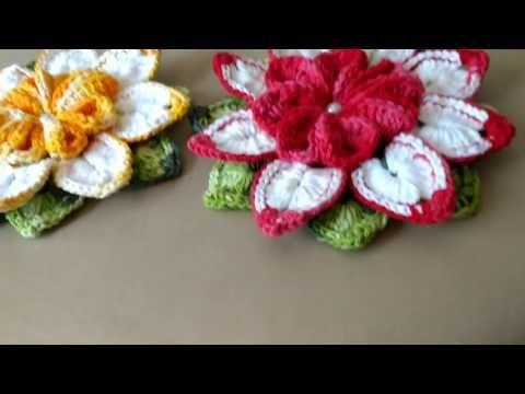 Flor Requinte - YouTube