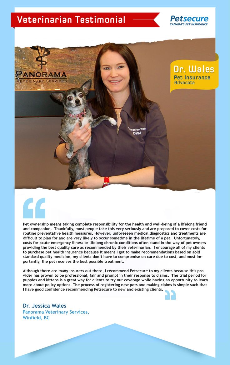 Here's a story from Dr. Wales at Panorama Veterinary Services in #BC about the importance of pet insurance and why she recommends Petsecure.#petinsurance