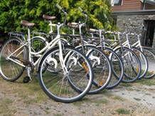 Picnic bike tour co near Queenstown