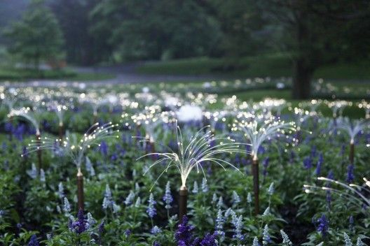 Puntos LED iluminan los Jardines de Longwood / Bruce Munro (23)