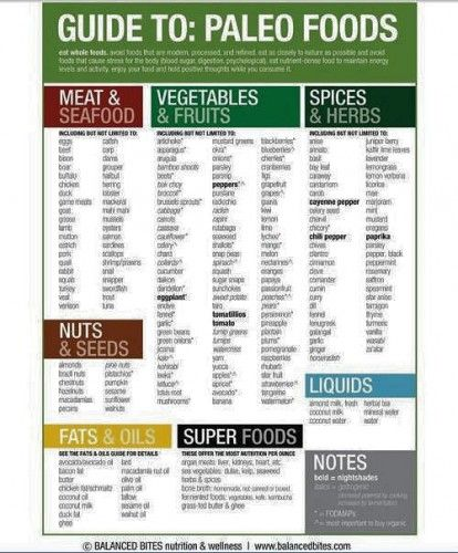Healthy Food Graphics -