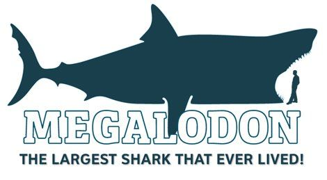 Megalodon Sightings 2009 | image naming: