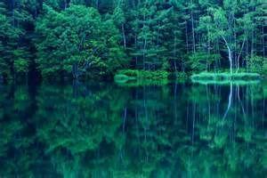 水鏡。透明な水はどんな色も美しく見せてくれるキャンバスだ。