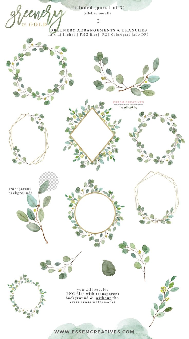 Watercolor Eucalyptus Clipart, Leaves Wreath Clipart, Gold Foil Geometric Frames PNG, Greenery and Gold Garden Outdoor Wedding Invitation