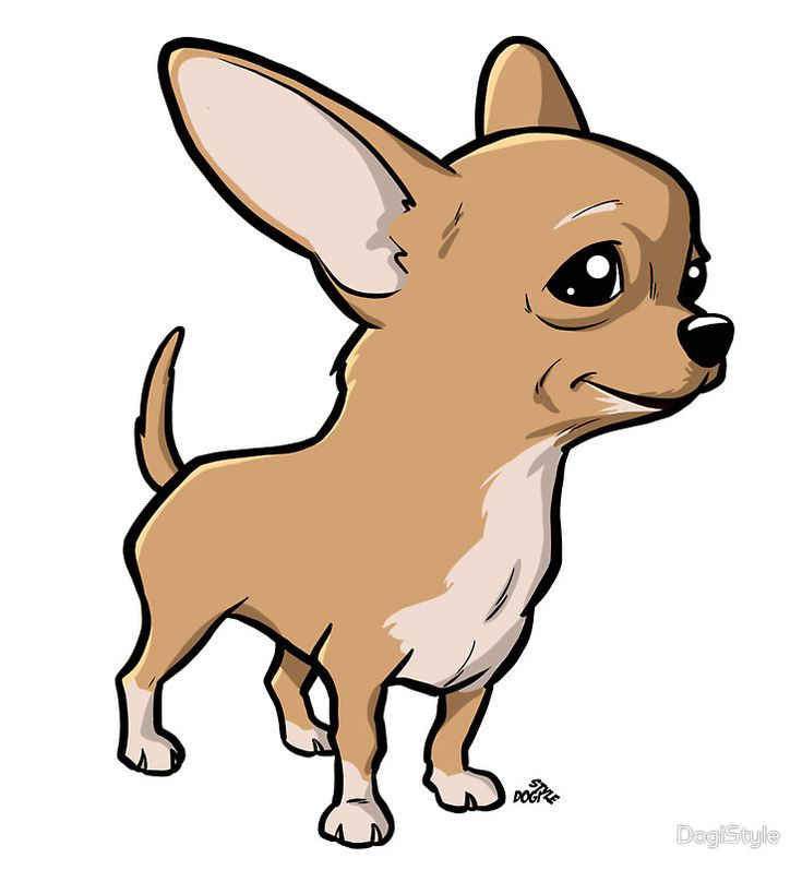 Chihuahua cartoon dog