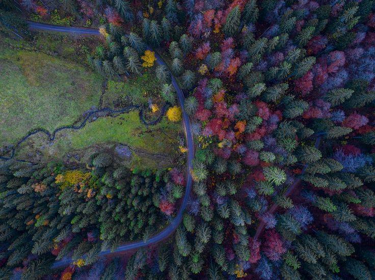 rushinroulettephotography🍁 The BLACK FORREST with my drone 🚁💨 in Germany 🇩🇪 - 📷 by #rushinroulettephotography - #beautifullight #instafollow #tagforlikes #instagram #l4l #followback #photooftheday #wowshot #ourplanetdaily #wow #beautifuldestinations #minimal #instagram #dji #djiphantom #drone #dronestagram #droneoftheday #dronefly #landscape #phantom4pro #feldsee #hochschwarzwald #germany #schwarzwald #blackforest #autumn #visitgermany #lake #tree
