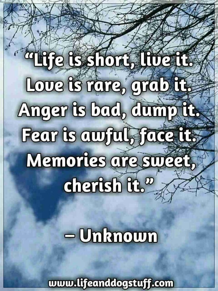 Life is short quote. Inspirational quotes   Motivational quotes   Best life quotes.