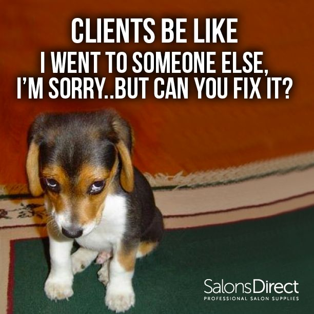 Funny Memes For Hairstylists : Best hairdresser humor images on pinterest hair