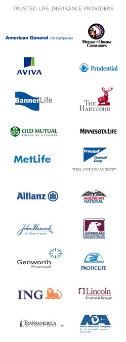 Senior Life Insurance Quotes Online Brilliant Best 25 Senior Life Insurance Ideas On Pinterest  Baby Bunnies