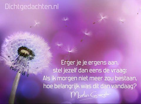 Gedichten - Martin Gijzemijter - Dichtgedachte #506