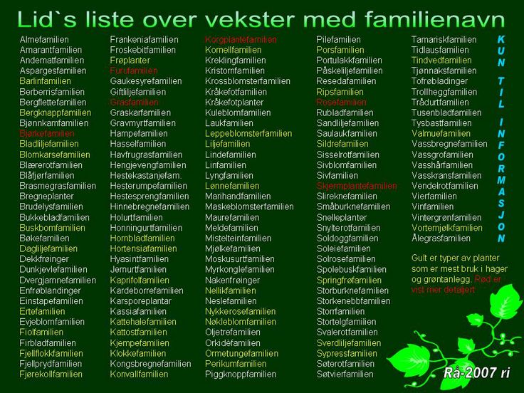 Skoletanker fra Rå