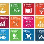 17-Objetivos-Desenvolvimento-Sustentavel