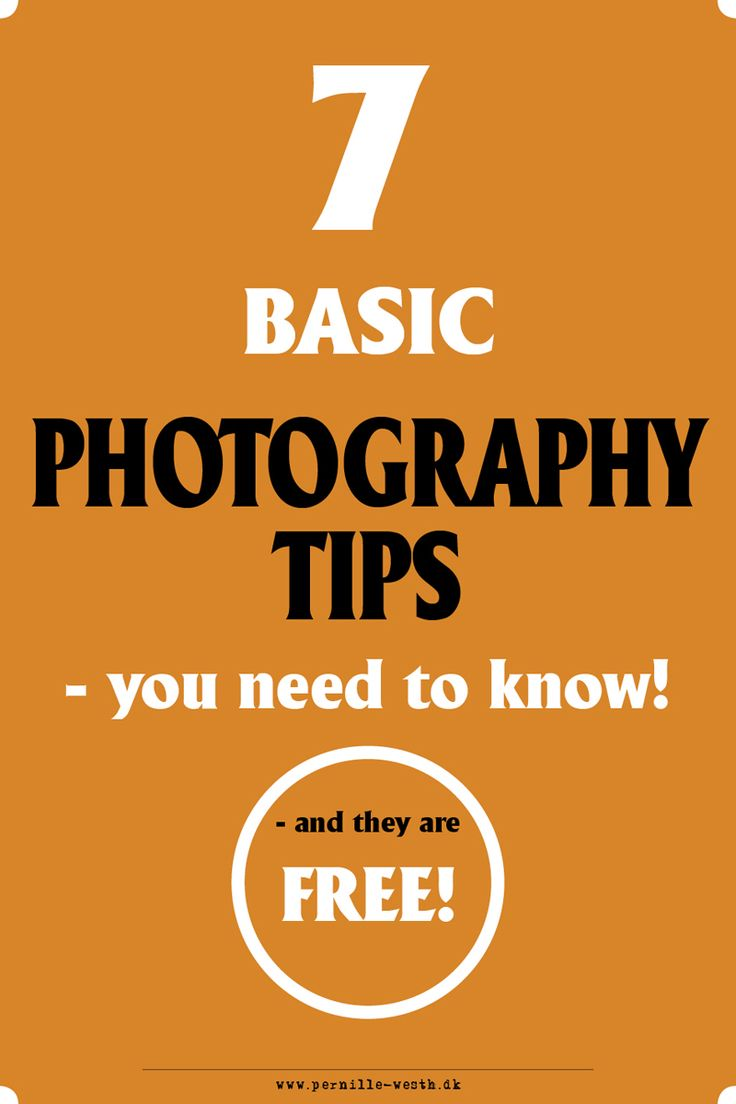 Get my 7 basic photography tips you NEED to know for FREE! Photo tips!
