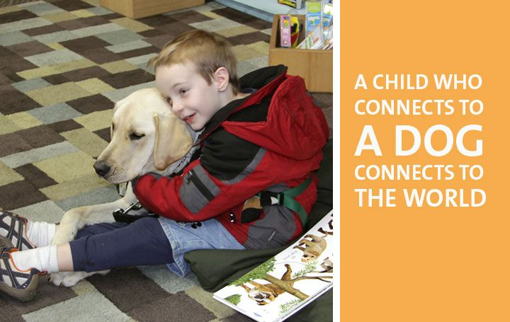 Autism Service Dogs of America: Warm 'n' fuzzy hope and help!