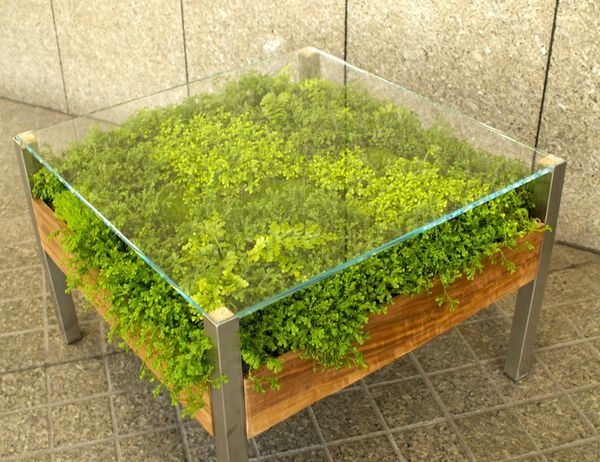 """Living Table"" by Habitat Horticulture"