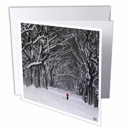 3dRose Christmas in New York, Snow blizzard in Central Park second picture, Greeting Cards, 6 x 6 inches, set of 12