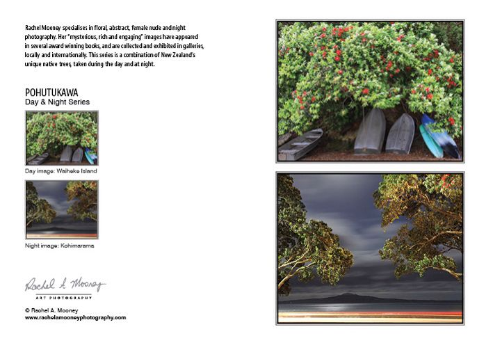 NZ Native Flora Art Cards #artcards #nzflora #nzphotography #rachelmooneyphotography
