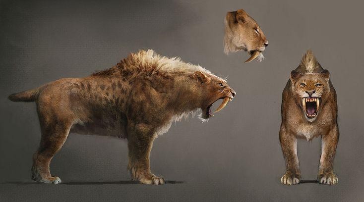 Sabretooth Tiger