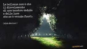 La bellezza non è che il disvelamento di una tenebra caduta e della luce che ne è venuta fuori. (Alda Merini)