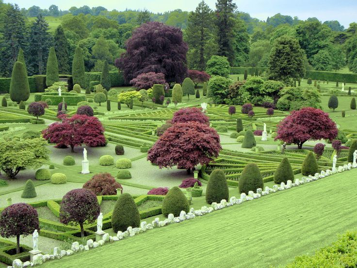 Garden Design Hedges 291 best hedges & topiary images on pinterest | topiaries, formal