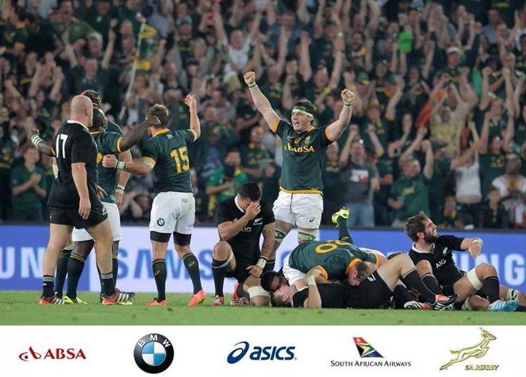 Springbok glory