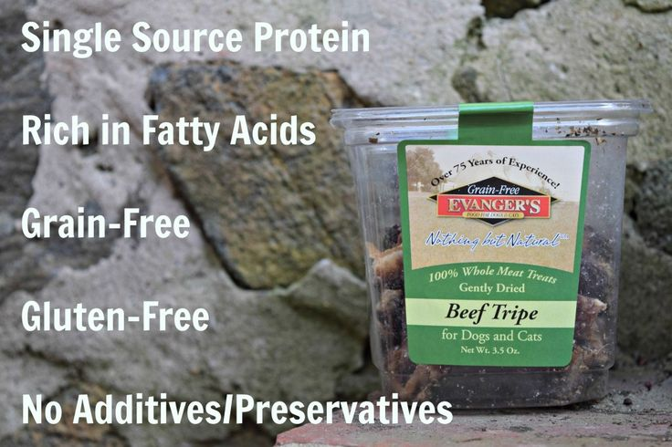Evanger's Beef Tripe is an excellent source of protein and probiotics - Read our full review @mydoglikes