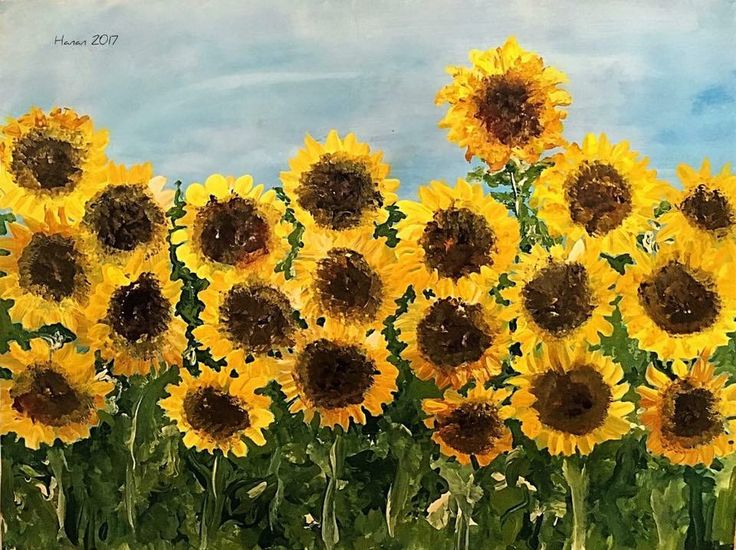 Sunflower Field  Acrylic on paper  2017