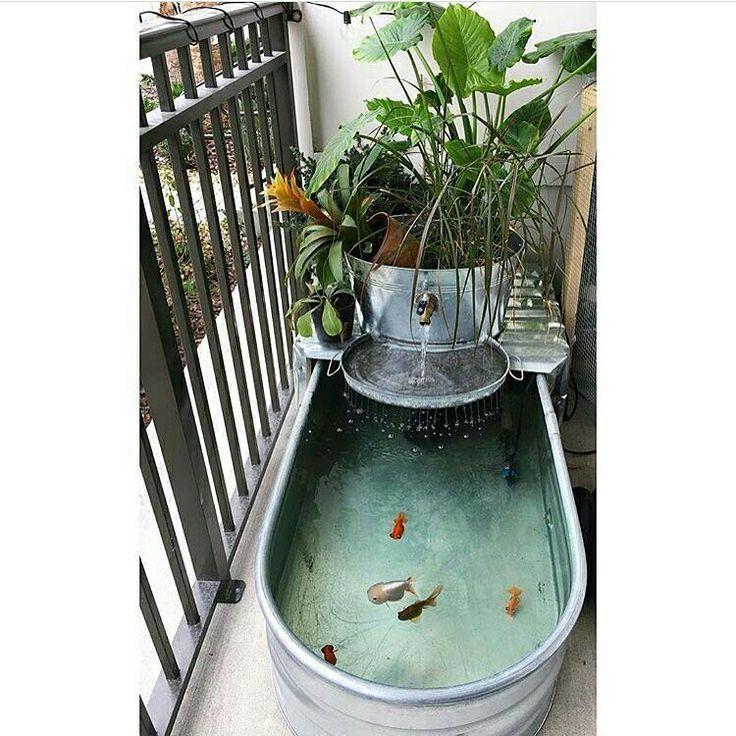 Aquarium f r kleinen balkon homesweethell balkon deko for Goldfischteich bauen