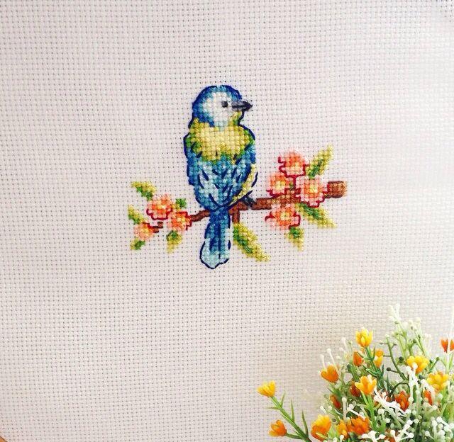 Dalında bi kuş