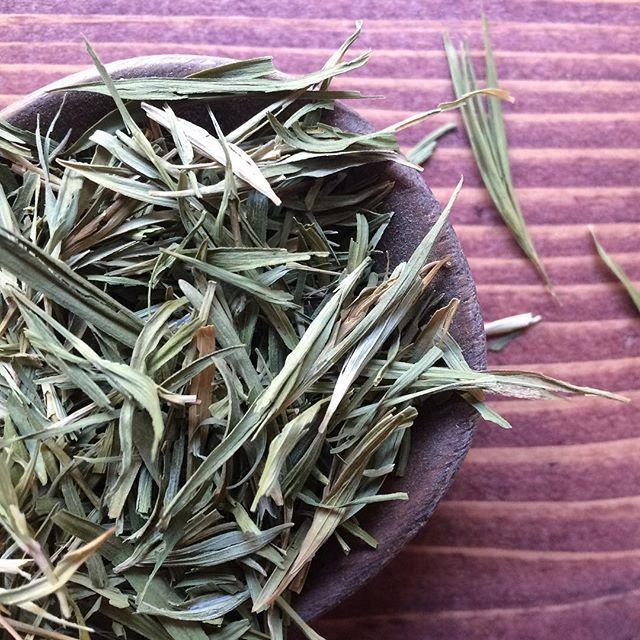 Bamboo Tea, en özel bambuların yetiştiği Güney Kore'den geliyor. #bambootea #chado