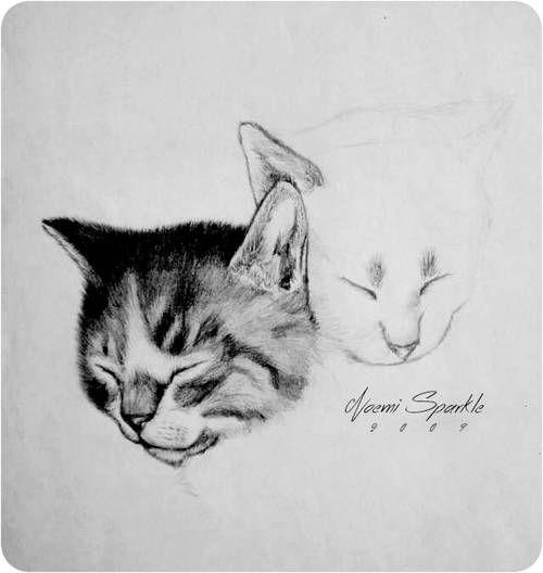 #cat #drawing #animal #art #puppy #pet #kitty #pencil #howto #tutorial #realisric #3D #noemisparkle #youtube #stepbystep