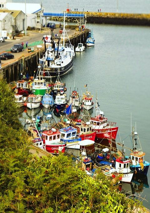 ~Dunmore east harbour, County Waterford, Ireland~     (by Alsal Photography on Flickr)