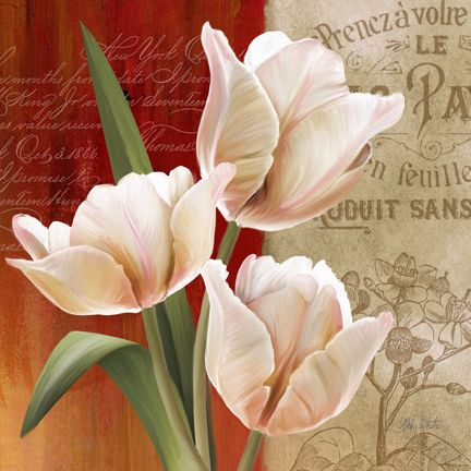 French Tulips II by Abby White ~ floral art