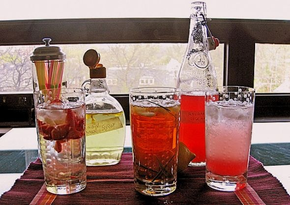 Rosemary lemon rhubarb spritzer | rhubarbpalooza | Pinterest