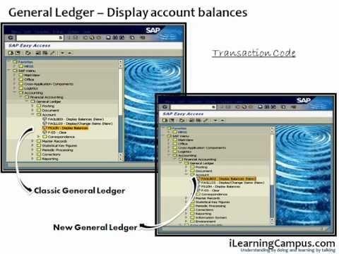 SAP ERP - FI (Finance) Accounts and Balance display