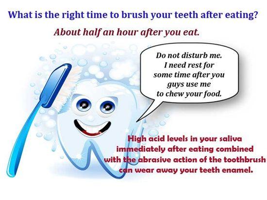 Sociological essay on brushing teeth